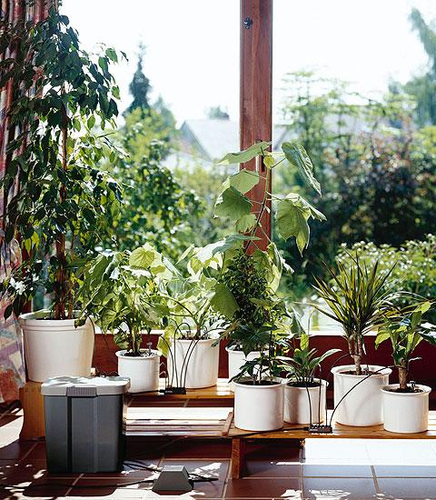 wie ihre pflanzen im haus den urlaub berleben ideen zur bew sserung. Black Bedroom Furniture Sets. Home Design Ideas